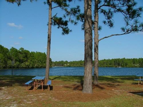 Spring Lake in Boiling Spring Lakes