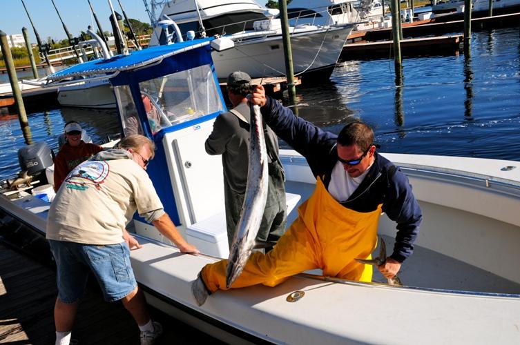 Fish Offloading at US Open King Mackerel Tournament